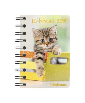 Kittens 2018 Taschenkalender Deluxe klein
