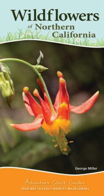Wildflowers of Northern California
