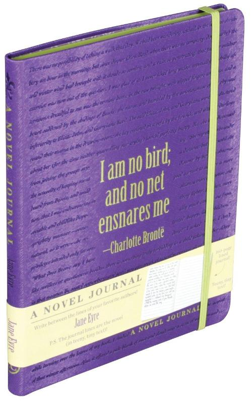 the social injustices in jane eyre by charlotte bronte The theme of social class and social rules in jane eyre from litcharts | the creators of sparknotes sign in sign up lit jane eyre by charlotte bronte upgrade.
