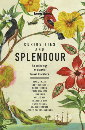 Lonely Planet Curiosities and Splendour