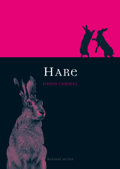 Animal Series: Hare