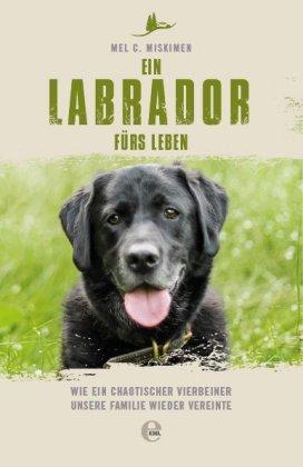Ein Labrador fürs Leben