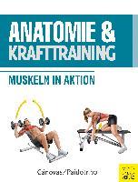Anatomie und Krafttraining (Anatomie & Sport, Band 1)