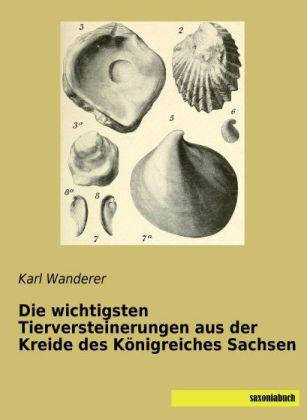 Die wichtigsten Tierversteinerungen aus der Kreide des Königreiches Sachsen