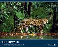 Regenwald 2018