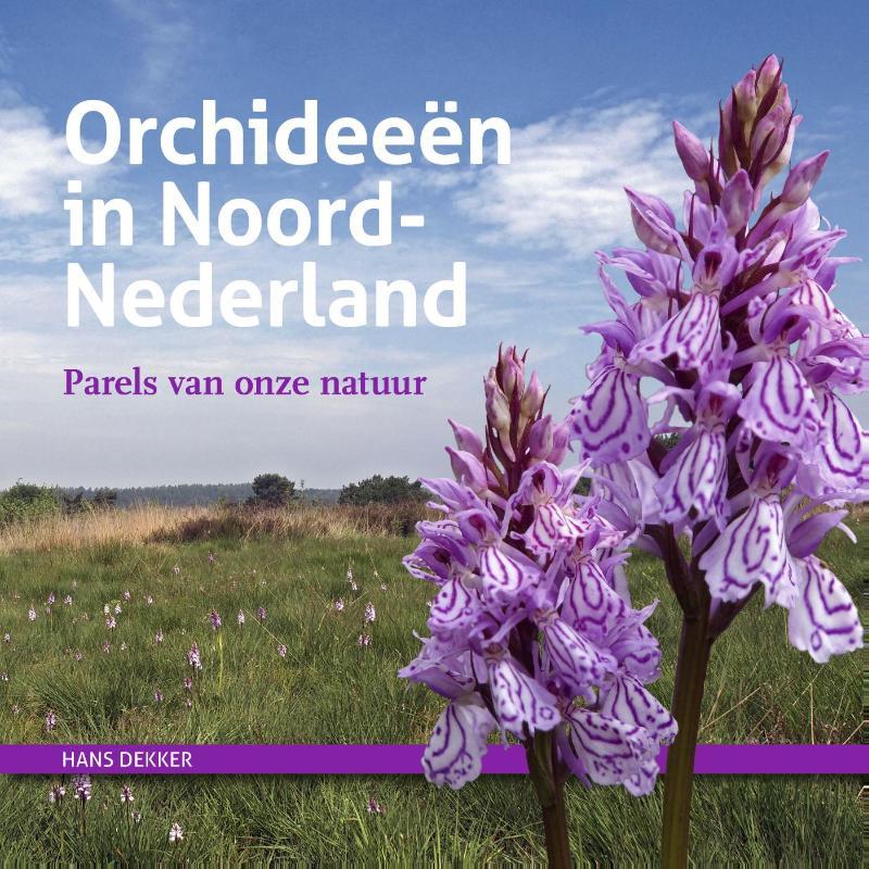 Orchideeën in Noord-Nederland