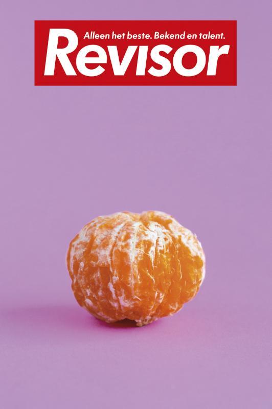 Revisor 14