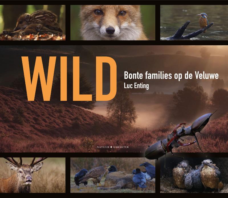 Wild - Bonte families op de Veluwe