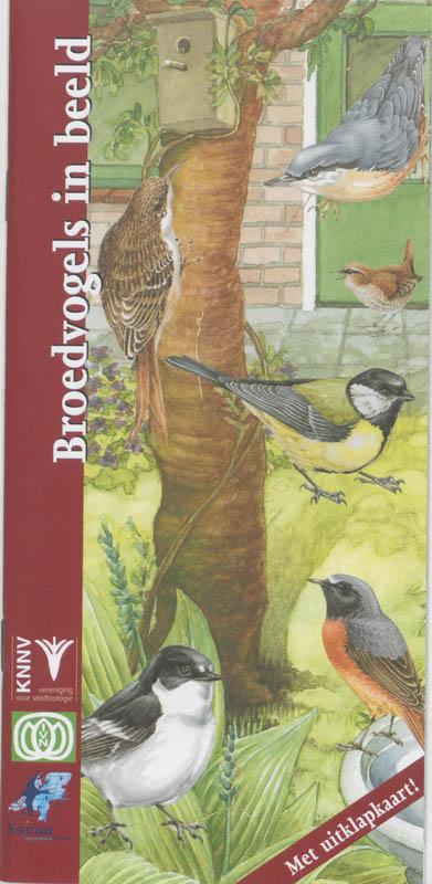 Broedvogels in beeld - tuinvogels, vogelgids