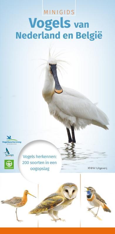 MINIGIDS Vogels van Nederland en België - vogelgids, natuurgids
