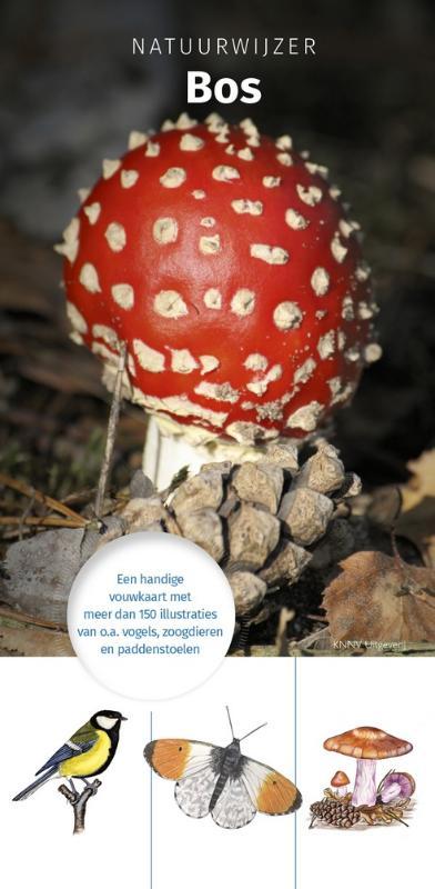 Natuurwijzer Bos - zoekkaart, herkenningskaart