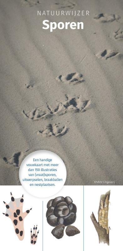 Natuurwijzer Sporen - zoekkaart, herkenningskaart