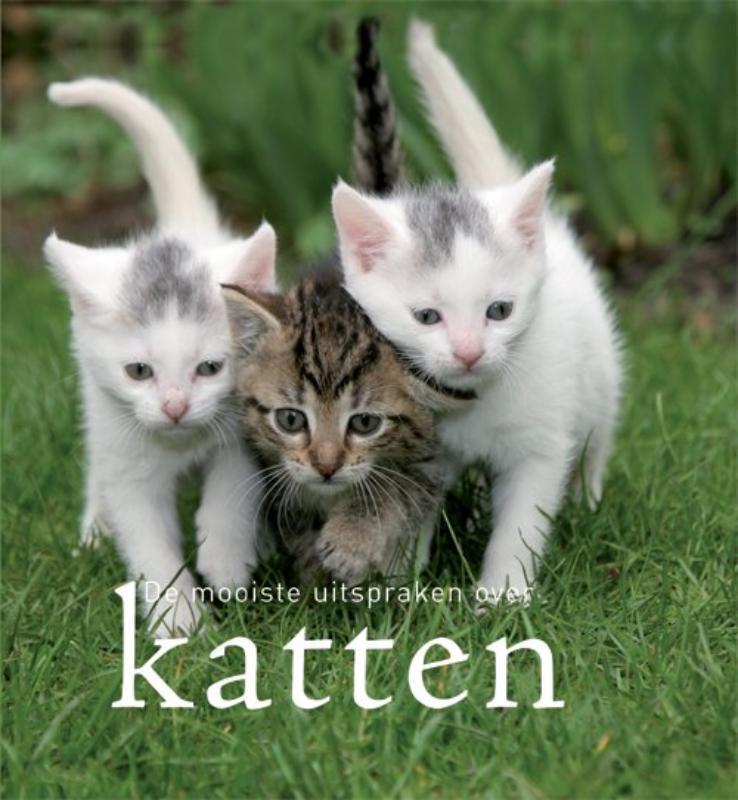 De mooiste uitspraken over katten