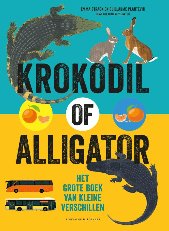Krokodil of alligator