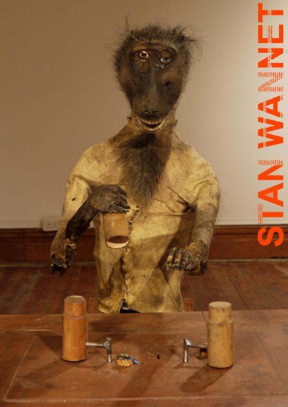 Verbeke Foundation Artist Books Stan Wannet - Rational Animal