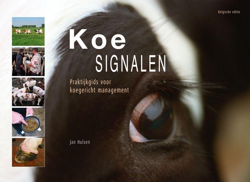 Koesignalen Belgische editie