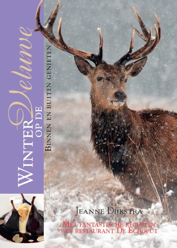 Winter op de Veluwe