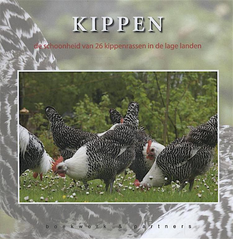 Kippen. De schoonheid van 26 kippenrassen in de lage landen.
