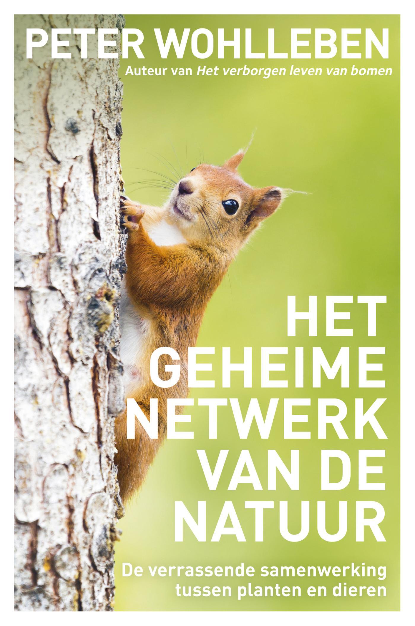 Het geheime netwerk van de natuur