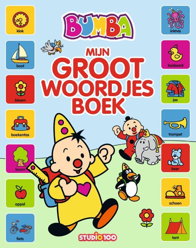 : groot kartonboek - mijn groot woordjesboek