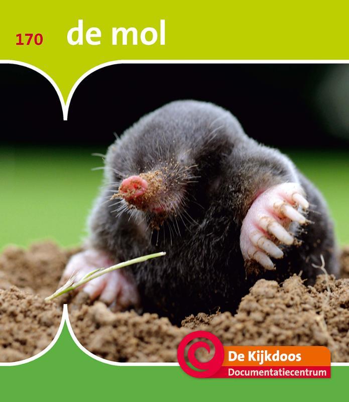 De Kijkdoos De mol