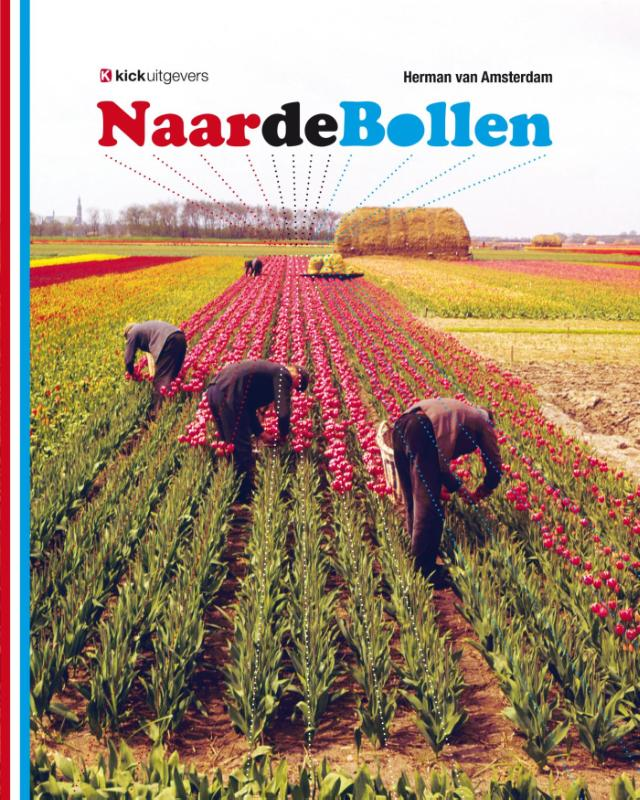 Naar de bollen - zo zag u het Hollandse bollenveld nooit eerder!