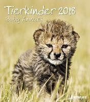Baby Animals 30 x 34 Wall Calendar 2018