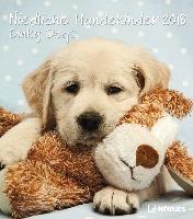 Niedliche Hundekinder 2018