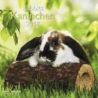 Kaninchen - Rabbits 2018 Broschürenkalender