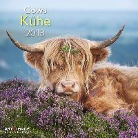 Kühe 2018 Broschürenkalender