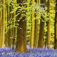Wald 2018 Broschürenkalender