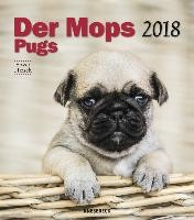 Der Mops 2018 Wandkalender