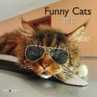 Funny Cats 2018 Broschürenkalender