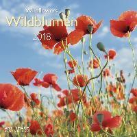 Wildblumen 2018 Broschürenkalender