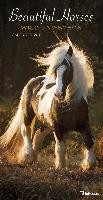 Beautiful Horses 2019 Wandkalender