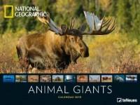 National Geographic Animal Giants 2019