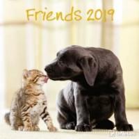 Friends 2019 Broschürenkalender