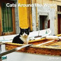 Cats Around the World 2019 Broschürenkalender