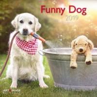 Funny Dog 2019 Broschürenkalender