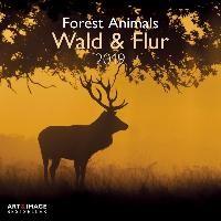 Wald & Flur 2019 Broschürenkalender