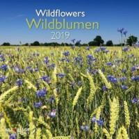 Wildblumen 2019 Broschürenkalender