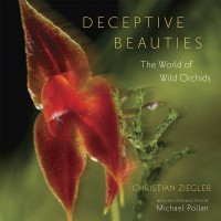 Deceptive Beauties - The World of Wild Orchids