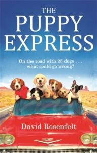 Puppy Express