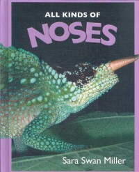 All Kinds of Noses