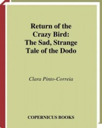 Return of the Crazy Bird