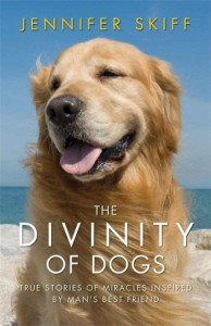 Divinity of Dogs