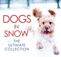 Dogs in Snow - the Ultimate Collection