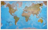 Maps International The World Environmental - Large Geplastificeerd