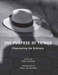 The Purpose of Things