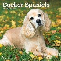 Cocker Spaniels - Cockerspaniels 2020 - 18-Monatskalender mit freier DogDays-App